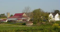 Image of Farm